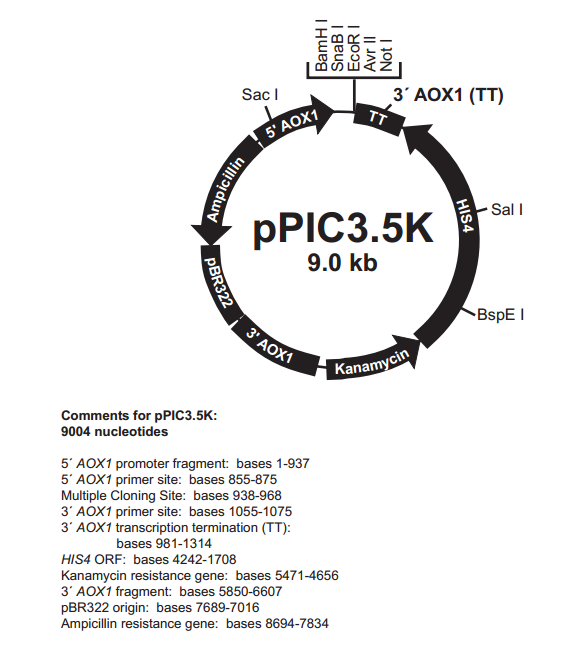 pPIC3.5K 质粒图谱